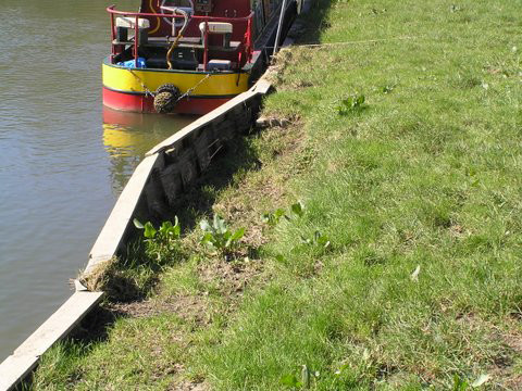 Marine Piling Contractors | Bank-Side Piling | River Bank Piling